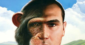 Human Brain More Similar to Monkey Brain Than Previously Thought | Third Monk