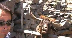 Man Argues with an Angry Spitting Goat (Video) | Third Monk