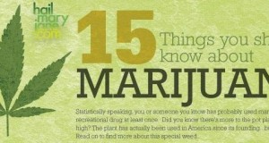 15 Things You Should Know About Marijuana (Infographic) | Third Monk image 2