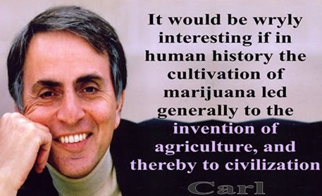 The Cultivation of Marijuana Led to Civilization - Carl Sagan | Third Monk image 1
