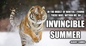 In the Midst of Winter, I Found There Was, Within Me, an Invincible Summer - Albert Camus | Third Monk