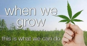 When We Grow - Cannabis Technology, Medicinal Uses and Legislation Documentary (Video) | Third Monk