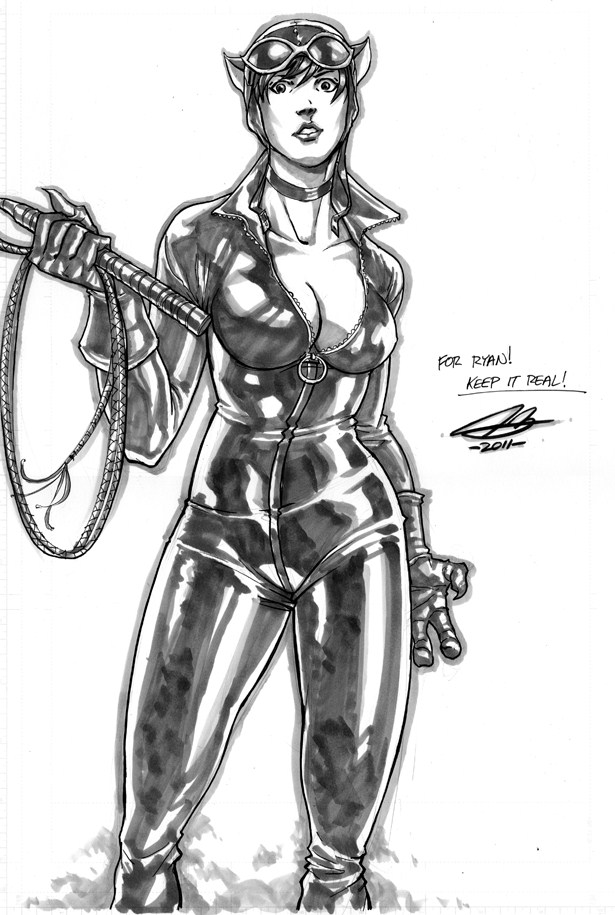 catwoman_commission_by_ngboy-d499djj