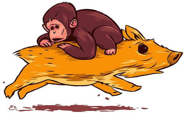 monkey-rides-pig-3