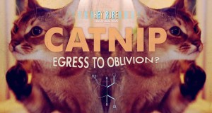 Catnip: Egress to Oblivion, Psychedelic Cats Short Film (Video) | Third Monk