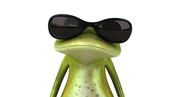 funny-animals-with-glasses-gallery-frog