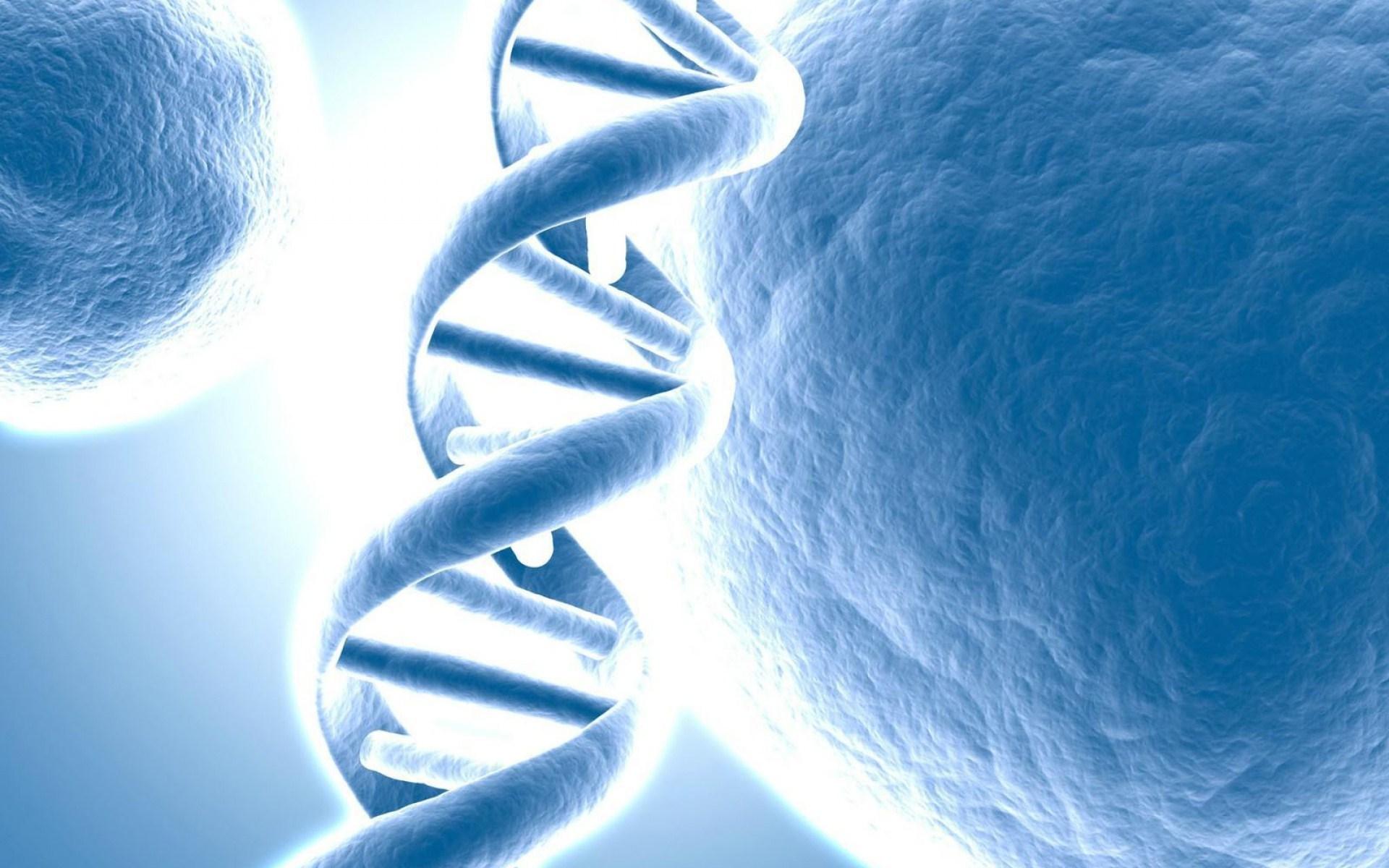 DNA-Simulation-Theory