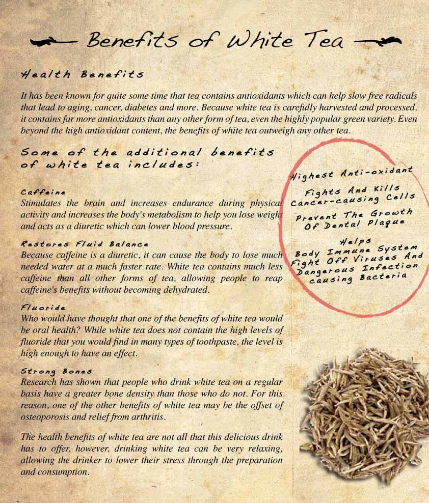 Benefits of Drinking Tea - white tea benefits
