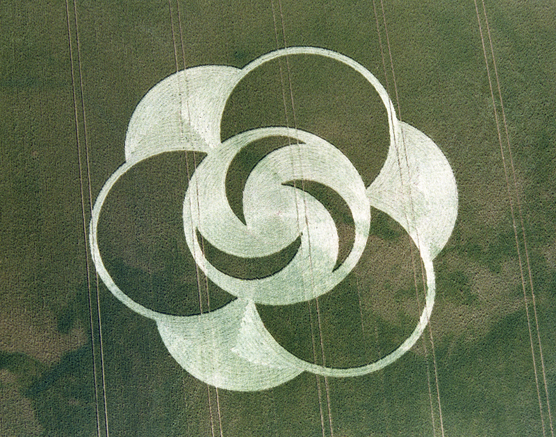 24-little-bury-green-essex-13-07-96-barley-35mm-neg
