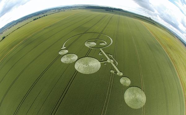 7-East-Field-Alton-Barnes-Wiltshire-Wheat-20-06-04-FE