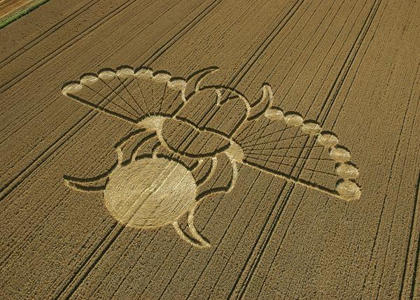 89-East-Field--Alton-Barnes-Wiltshire-21-08-05-Wheat-OH