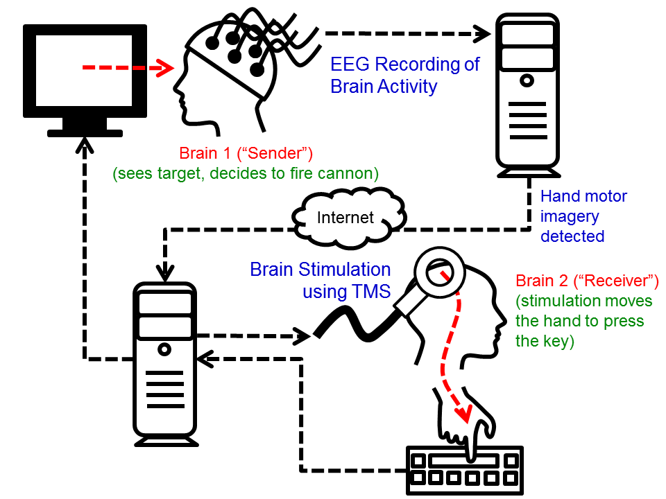 Human Brain to Brain Interface