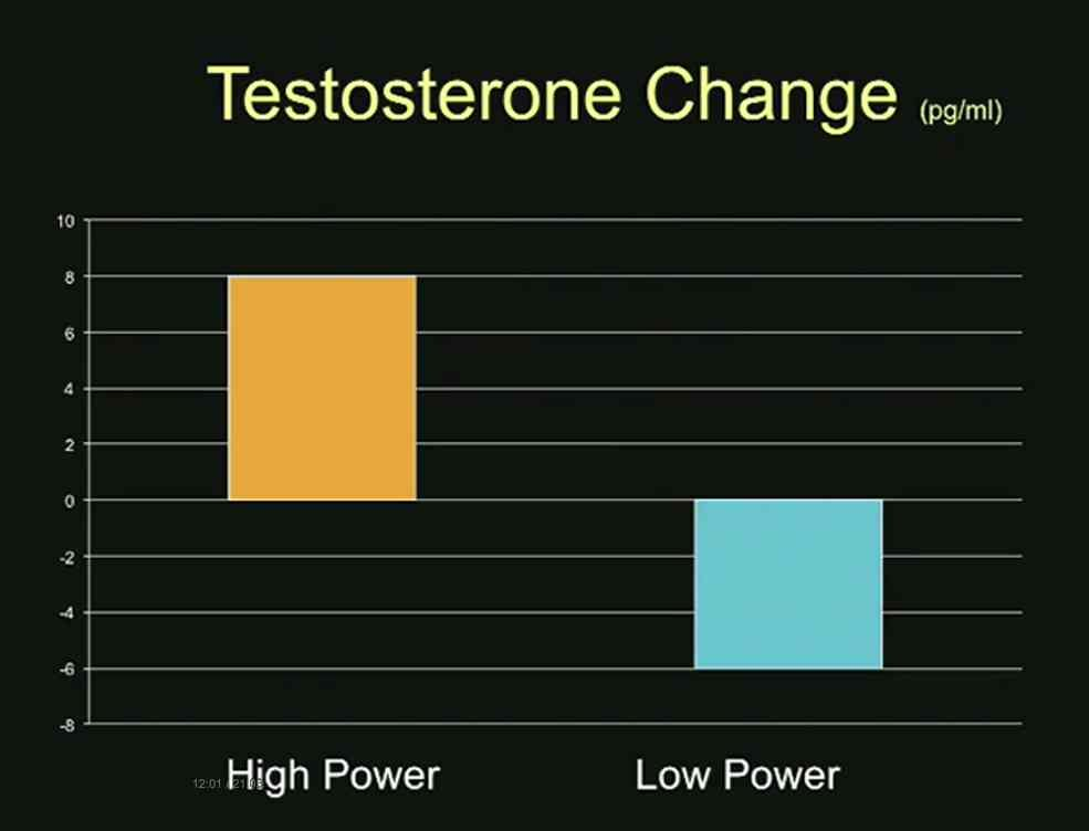 this-the-researchers-found-was-the-result-of-a-profound-change-in-body-chemistry-testosterone-is-the-dominance-hormone-after-a-mere-2-minute-pose-the-testosterone-levels-of-the-high-power-posers-rose-20-testosterone-le