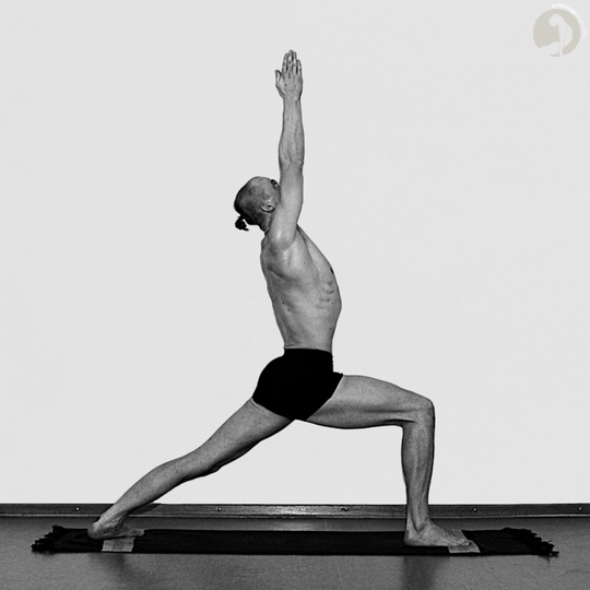 useful yoga pose - Virabhadrasana I