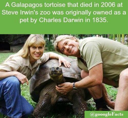 incredible-photo-facts-83420462