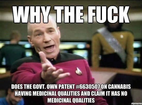 Cannabis Prevents Brain Damage
