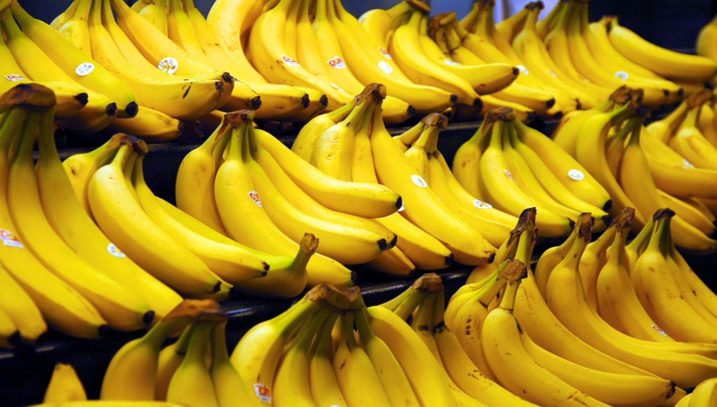 You'll Never Look at a Banana the Same Again | Third Monk image 14