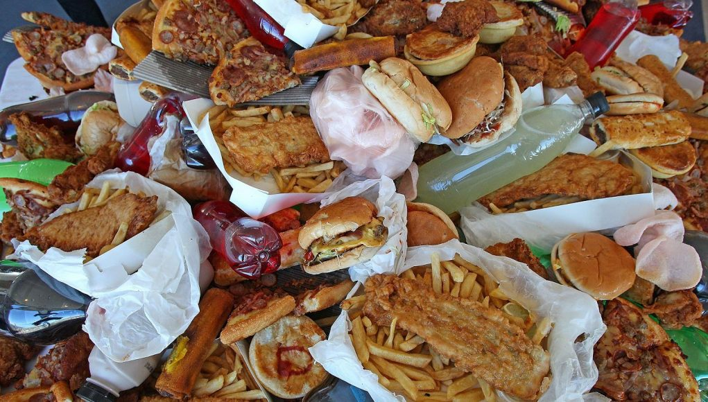 The Truth About Junk Food - A Sobering Account (Video) | Third Monk image 3