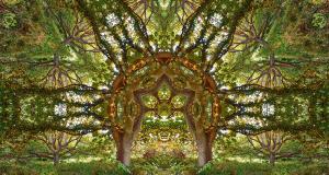Surreal Kaleidoscopic Portals by Matt Walford (Photo Gallery) | Third Monk image 1