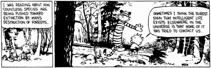 calvin and hobbes philosophy quotes and comic strips