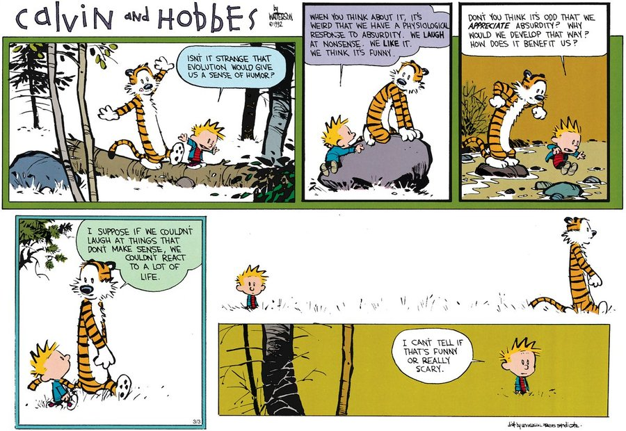 Calvin and Hobbes Philosophy