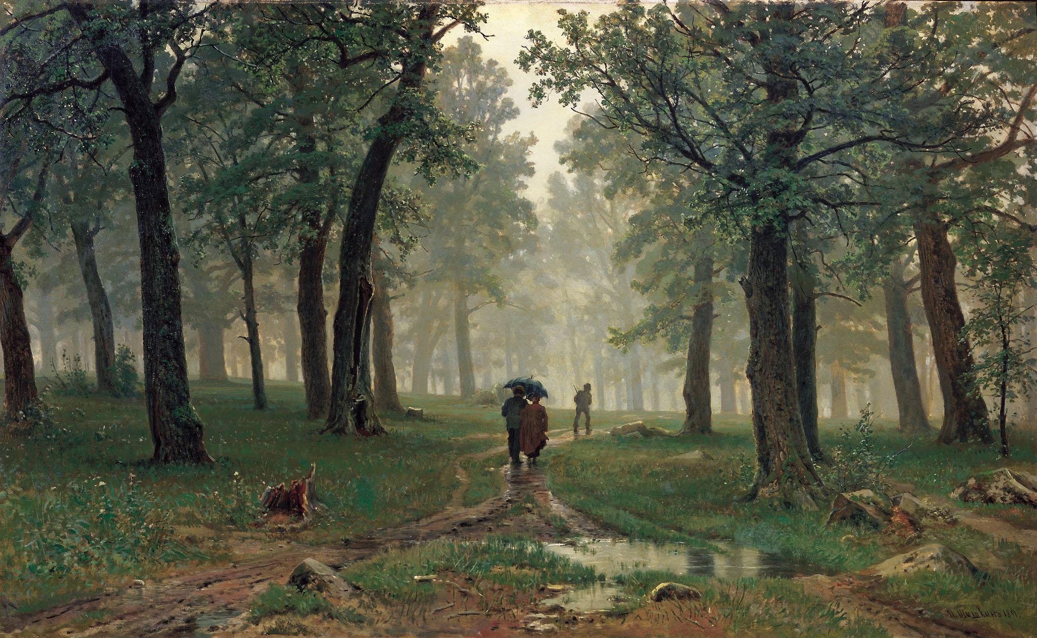 rain-in-oak-forest