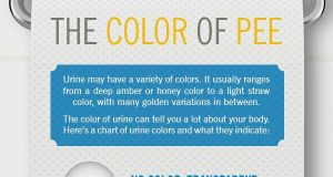 The Color of Pee - What Your Urine Says About You (Infographic) | Third Monk image 2