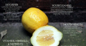 45 Amazing Uses for Lemons | Third Monk image 1