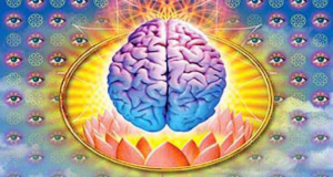 Future of Psychedelic and Medical Marijuana Research (Video) | Third Monk image 1