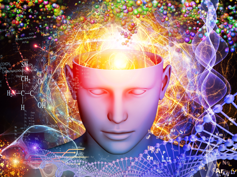 Diversity of the Mind - Psychedelics