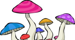 The Medical History of Psychedelic Research (Video) | Third Monk