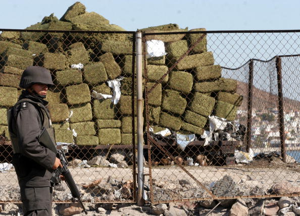 A member of the Mexican Army stands in f