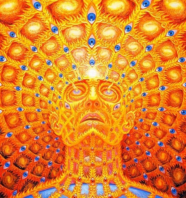 The Psychedelic Experience - by Alex Grey