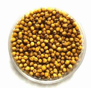 gmo foods rapeseed