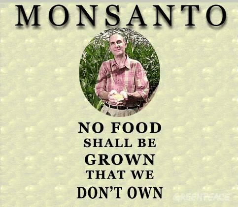monsanto-no-food