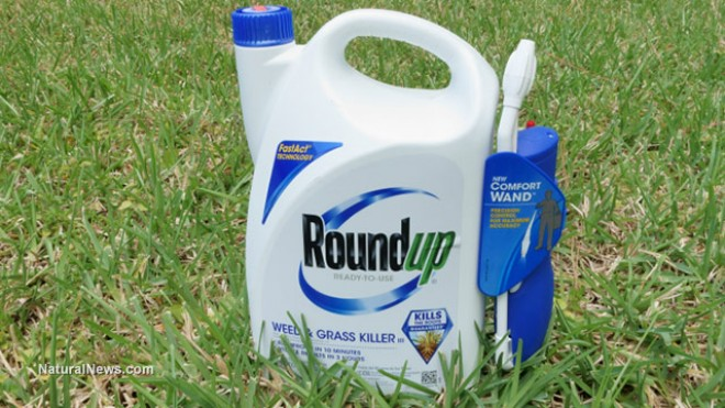 roundup and war i monsanto Monsanto also lost in france in 2007, when its scotts france ceo (yes scotts miracle-gro is a monsanto clone) was convicted of lying about roundup's environmental effects roundup and other common lawn poisons have been linked to cancer, hormone problems and other serious health issues in humans and non-human animals.