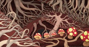 Mushroom Networks and the Language of Nature - Paul Stamets (Video) | Third Monk