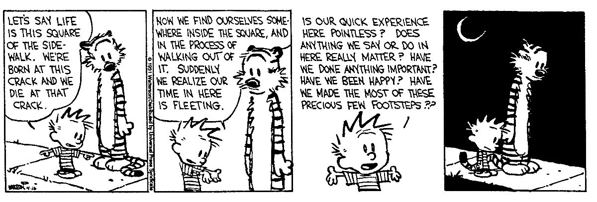 Calvin-and-Hobbes-get-existential