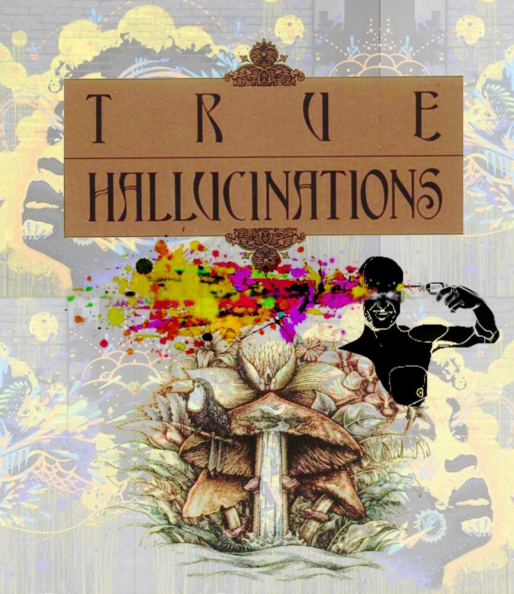 true_hallucinations_final