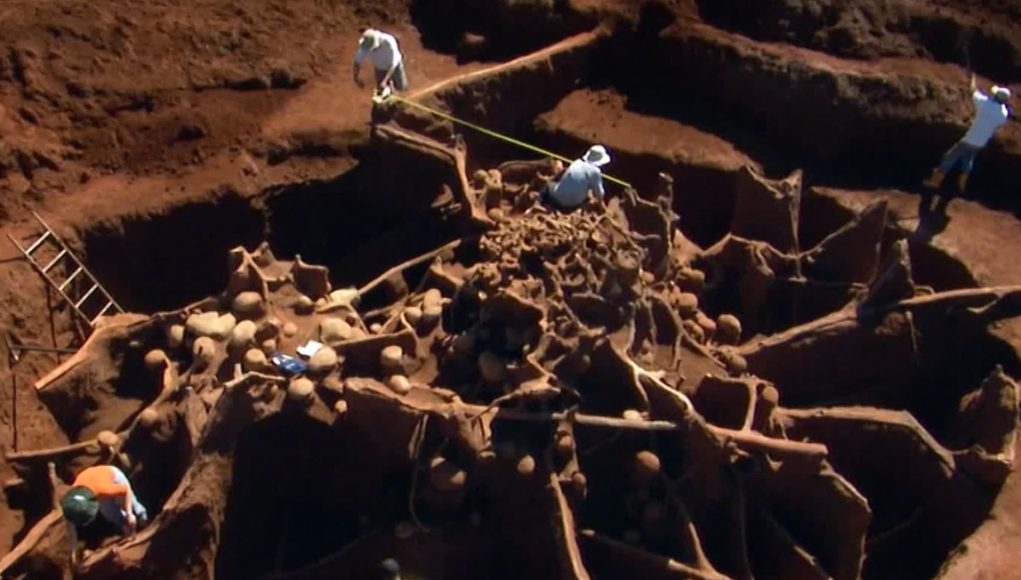 Giant Ant Hill Colony Impresses Scientists (Video) | Third Monk image 2