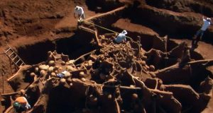 Giant Ant Hill Colony Impresses Scientists (Video)   Third Monk image 2