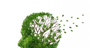 Alzheimer Hope: Possible to Restore Lost Memories (Study) | Third Monk image 2