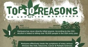 10 Reasons to Legalize Marijuana (Infographic) | Third Monk