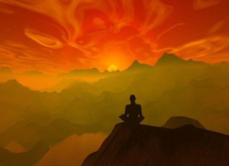 Magic Mushrooms Reduce Selfish and Depressive Brain Activity (Study) | Third Monk image 1