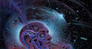 Psychedelic Spirit Paintings, Alex Grey Art Gallery | Third Monk image 15