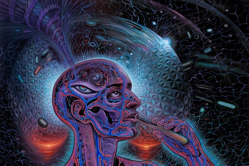 Psychedelic Spirit Paintings Alex Grey Art Gallery