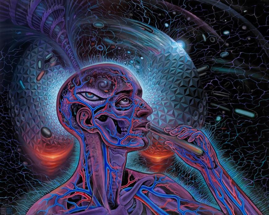 Psychedelic Spirit Paintings, Alex Grey Art Gallery ...