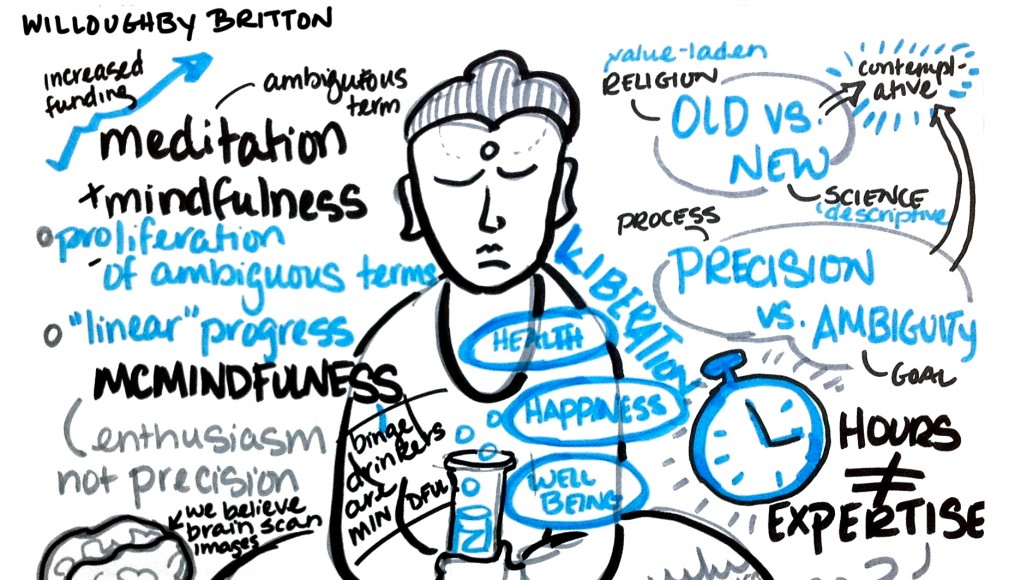 Neuroplasticity, Meditation and Happiness - Willoughby Britton Ted Talk (Video)   Third Monk image 2