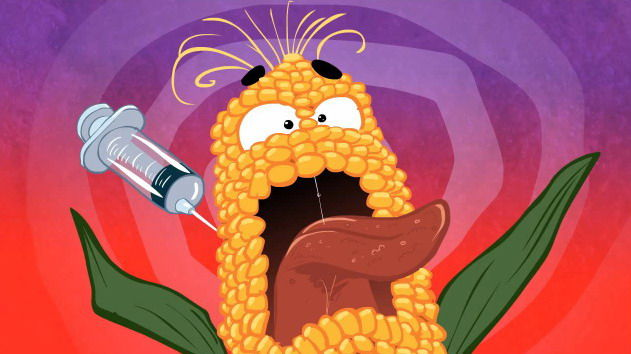 GMO A GO GO? - Animation on Monsanto's Food Poisoning (Video) | Third Monk