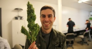 High Country - The Future of Cannabis Science and Technology (Video) | Third Monk